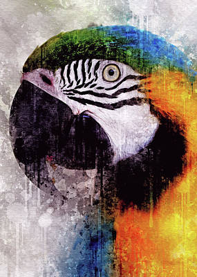 Digital Art - Grungastic Parrot by Yury Malkov