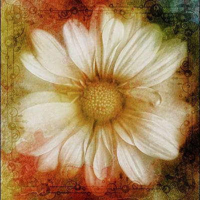 Floral Mixed Media - Grunge Vintage Daisy by Georgiana Romanovna