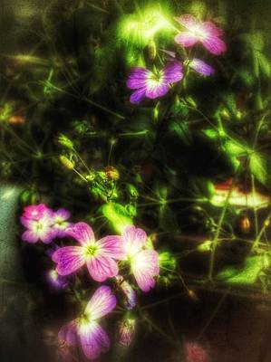 Photograph - Grunged Flowers by YoursByShores Isabella Shores