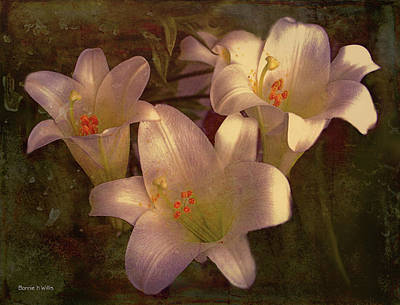 Digital Art - Grungy Easter Lilies by Bonnie Willis