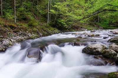 Waterfall Photograph - Gsmnp Stream Vi by Benjamin DeHaven