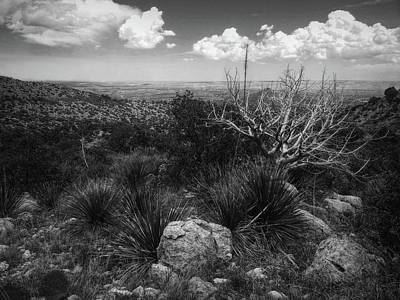 Photograph - Guadalupe Mountain View by Linda Unger
