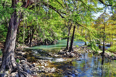Photograph - Guadalupe River In Gruene Texas by Savannah Gibbs