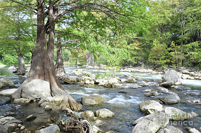 Photograph - Guadalupe River Rapids by Savannah Gibbs