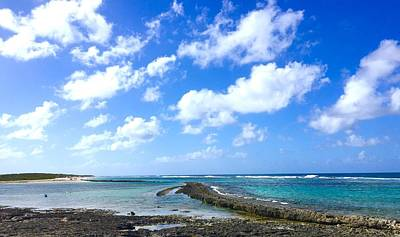 Photograph - Guadeloupe - Plage Des Salines by Cristina Stefan