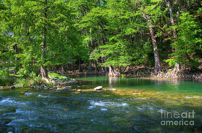 Photograph - Guadeloupe River Texas by Kelly Wade