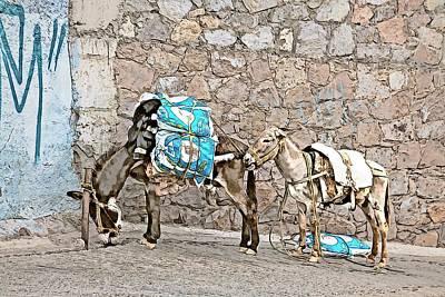 Photograph - Guanajuato Donkeys - Ink Digital Paint by Tatiana Travelways
