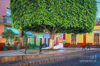 Window Bench Photograph - Guanajuato Small Park by Inge Johnsson