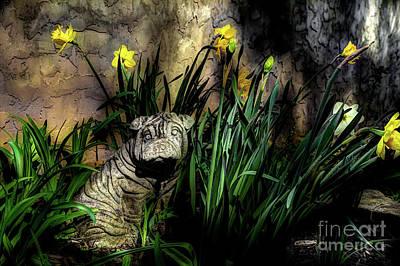 Shar Pei Photograph - Guardian by Michael Eingle