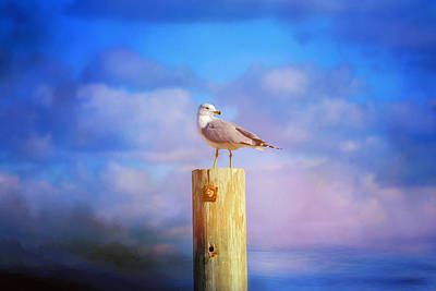 Photograph - Guardian Of The Sea by Lynn Bauer