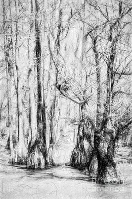 Painting - Guardians Of The Cypress Swamp Ap by Dan Carmichael