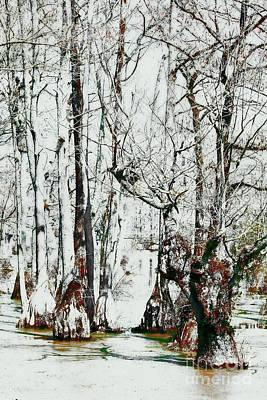 Digital Art - Guardians Of The Cypress Swamp Fx by Dan Carmichael