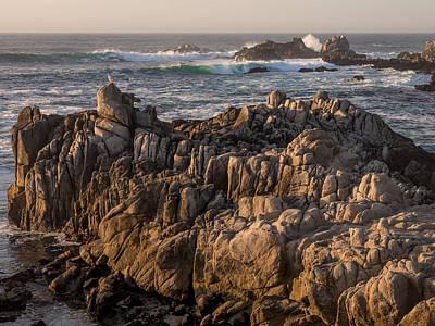 Photograph - Guardians Of The Shore by Derek Dean