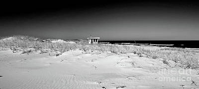Photograph - Guarding The Dunes In Bw by Mary Haber