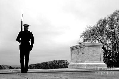 Guarding The Unknown Soldier Art Print by Olivier Le Queinec
