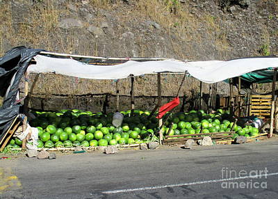Watermelon Photograph - Guatemala Stand 2 by Randall Weidner