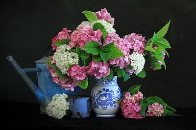 Guelder Roses Original