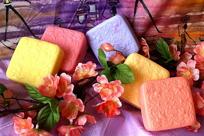 Guest Soaps Art Print by Sonja Anderson