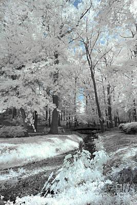 Photograph - Guignard Park by Charles Hite