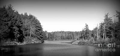 Winter Animals - Guilder Pond by Randy Jackson
