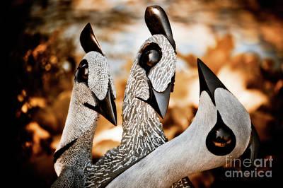 Guineafowl Photograph - Guineafowl Family by Venetta Archer