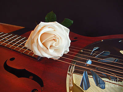 Photograph - Guitar And Rose 3 by Kelly Holm