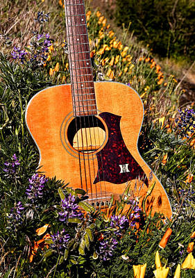 Photograph - Guitar And Wildflowers by Athena Mckinzie