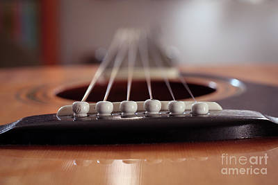 Photograph - Guitar close-up of the pins and strings low angle by Doug Moore