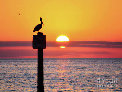 Photograph - Gulf Coast Enchantment by Third Eye Perspectives Photographic Fine Art