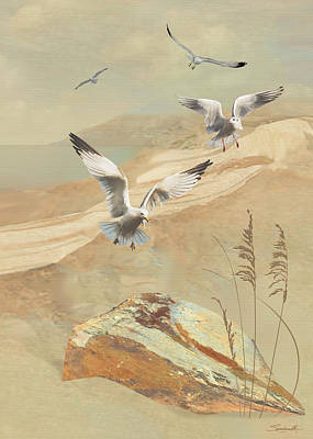 Digital Art - Gulf Coast Gulls  by IM Spadecaller