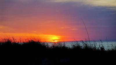Photograph - Gulf Coast Sunset by Steve Gravano