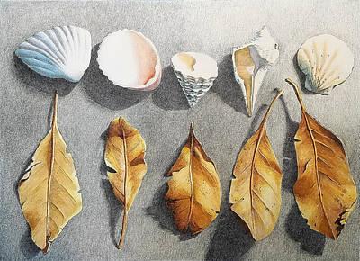 Drawing - Gulf Coast Treasures by Lynne Renzenberger
