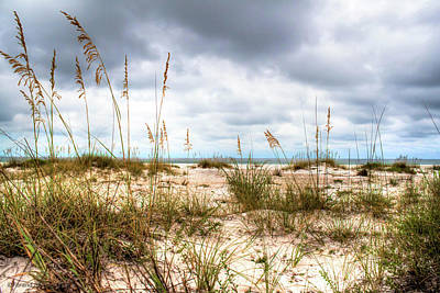 Photograph - Gulf Islands National Seashore by Debra Forand
