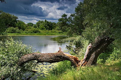 Desna Photograph - Gulf Of Desna by Oleksandr Chernii