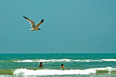 Gulf Of Mexico From Padre Island Art Print by Jorge Gaete