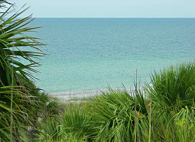 Photograph - Gulf Of Mexico View From Fort De Soto by Emmy Marie Vickers