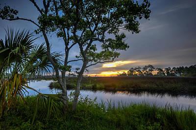 Photograph - Gulf Shores Alabama Marsh by Michael Thomas