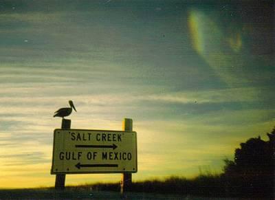 Gulf Sunset At The Suwannee River Art Print by Warren Thompson