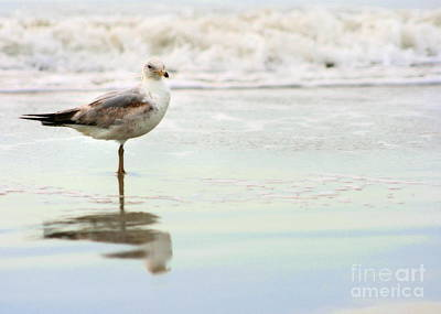 Beach Theme Decorating Photograph - Land Sea And Sky Series 4 by Angela Rath