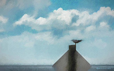 Grey Clouds Photograph - Gull And Sky by Marvin Spates