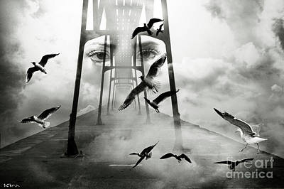 Photograph - Gull Bridge by Kira Bodensted