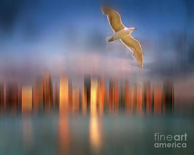 Tourist Attraction Digital Art - Gull Flight 587 by Edmund Nagele