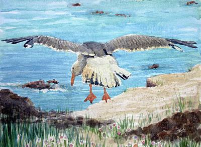 Gull On The Washington Coast Print by Stephen Boyle