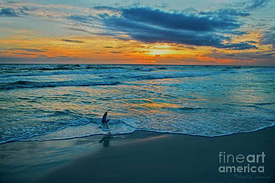 Photograph - Gull Takes Flight At Sunset by David Arment