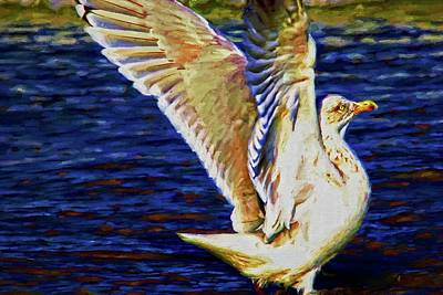Photograph - Gull Wings by Alice Gipson