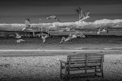 Photograph - Gulls Flying By The Mackinac Bridge In Black And White by Randall Nyhof