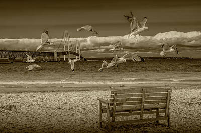 Photograph - Gulls Flying By The Mackinac Bridge In Sepia Tone by Randall Nyhof