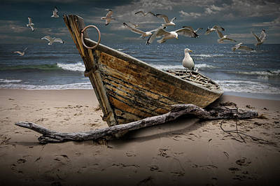Gulls Flying Over A Shipwrecked Wooden Boat On The Beach Art Print