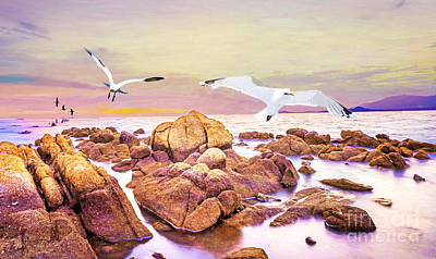 Gull Wall Art - Photograph - Gulls Glide by Laura D Young