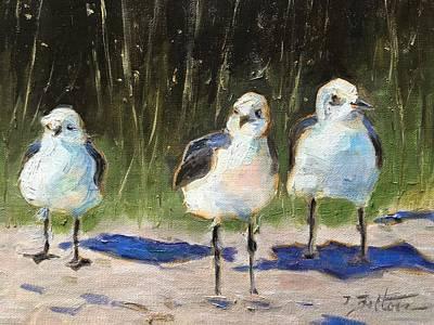 Sea Gulls In Waiting Original